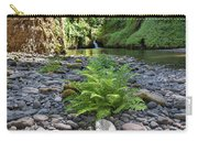 Ferns Along Banks Of Eagle Creek Carry-all Pouch