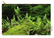Ferns And Moss On The Ma At Carry-all Pouch