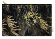 Ferns Below Falls By Jean Noren Carry-all Pouch