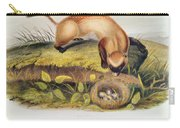 Ferret Carry-all Pouch