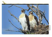 Ferruginous Hawk 4 Carry-all Pouch