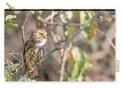 Ferruginous Pygmy-owl Carry-all Pouch