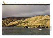 Ferry View Picton New Zealand Carry-all Pouch