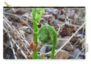 Fiddlehead Ferns In Spring Carry-all Pouch