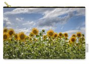 Field Of Dreams Panorama Carry-all Pouch