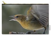 Fiesty Oriole Carry-all Pouch