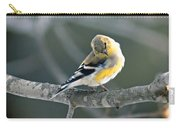 Finch Courtsy Carry-all Pouch