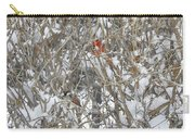 Find The Birds Carry-all Pouch