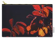 Fire In Hands  Carry-all Pouch