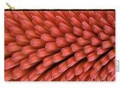 Firecracker Carry-all Pouch