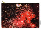 Fireworks 3 Carry-all Pouch