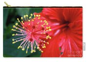 Fireworks - Hibiscus Carry-all Pouch