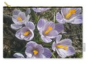 First Crocuses Of Spring 2015 Carry-all Pouch