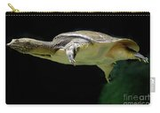 Fish 37 Carry-all Pouch