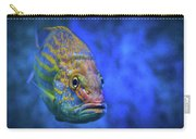 Fish Frown Story Carry-all Pouch