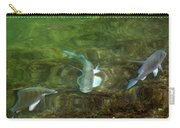 Fish Refractions Carry-all Pouch
