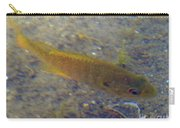 Fish Sandy Bottom Carry-all Pouch