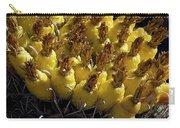 Fishhook Barrel Cactus Fruit Carry-all Pouch