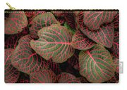 Fittonia Carry-all Pouch