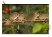 Five Eurasian Harvest Mice Carry-all Pouch