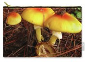 Flame Pluteus Mushroom  Carry-all Pouch