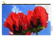 Flaming Skies Carry-all Pouch