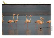 Flamingo During Sunset Carry-all Pouch
