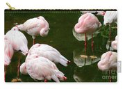 Flamingos 10 Carry-all Pouch
