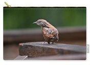Fledgling Wren 1 Carry-all Pouch