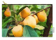 Fleshy Yellow Plums On The Branch Carry-all Pouch