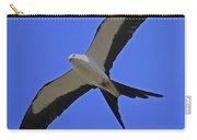 Flight Of The Kite Carry-all Pouch
