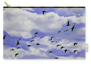 Flight Over Lake Carry-all Pouch