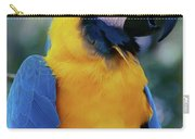 Flirtacious Macaw Carry-all Pouch