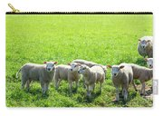 Flock Of Sheep Standing In A Field Waiting Carry-all Pouch
