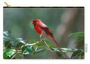 Florida Cardinal Carry-all Pouch
