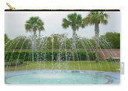 Florida Fountain Carry-all Pouch