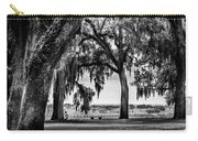 Florida Interior From Bok Gardens Carry-all Pouch