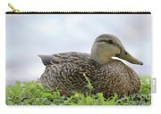 Florida Mallard Carry-all Pouch