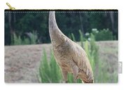 Florida Sandhill Crane Carry-all Pouch