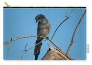 Florida Scrub Jay Pondering Life's Choices Carry-all Pouch