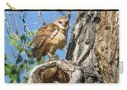 Fluffed Up Barn Owl Owlet Carry-all Pouch