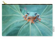 Flying Frog Wallace Carry-all Pouch
