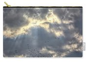 Flying Through Sun Rays 2 Carry-all Pouch