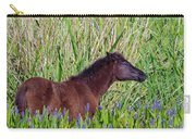 Foal Grazing  Carry-all Pouch