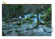 Fontaine De Vaucluse IIII Carry-all Pouch
