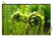 Forest Ferns Fine Art Photography Art Prints Baslee Troutman Carry-all Pouch