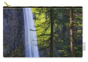 Forest Mist Carry-all Pouch by Chad Dutson