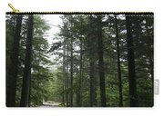 Forest Path At Grafton Notch State Park Carry-all Pouch