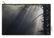 Forest Rays Carry-all Pouch