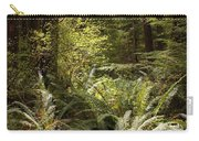 Forest Sunlight And Shadows  Carry-all Pouch